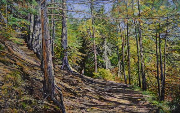 Artwork: Algonquin Hillside
