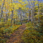 Artwork: Algonquin Trail - SOLD