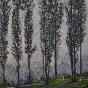 Artwork: Charlevoix Lombardy Poplars