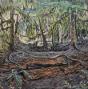 Artwork: Fallen Cedar