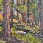 Artwork: Lakota Hillside - SOLD