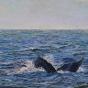 Artwork: Ocean Fluke