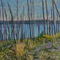 Artwork: Yellowstone Lake Burnout - SOLD
